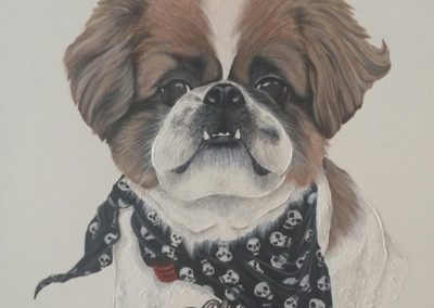 My Buddy Pet Portraits